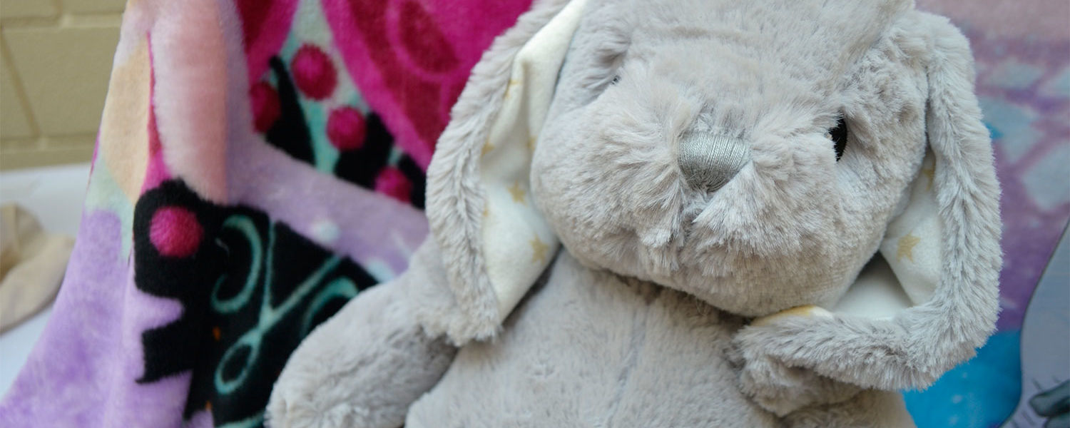 Sigma Theta Tau International Delta Xi Chapter is collecting stuffed animals like this bunny for Project Night Night