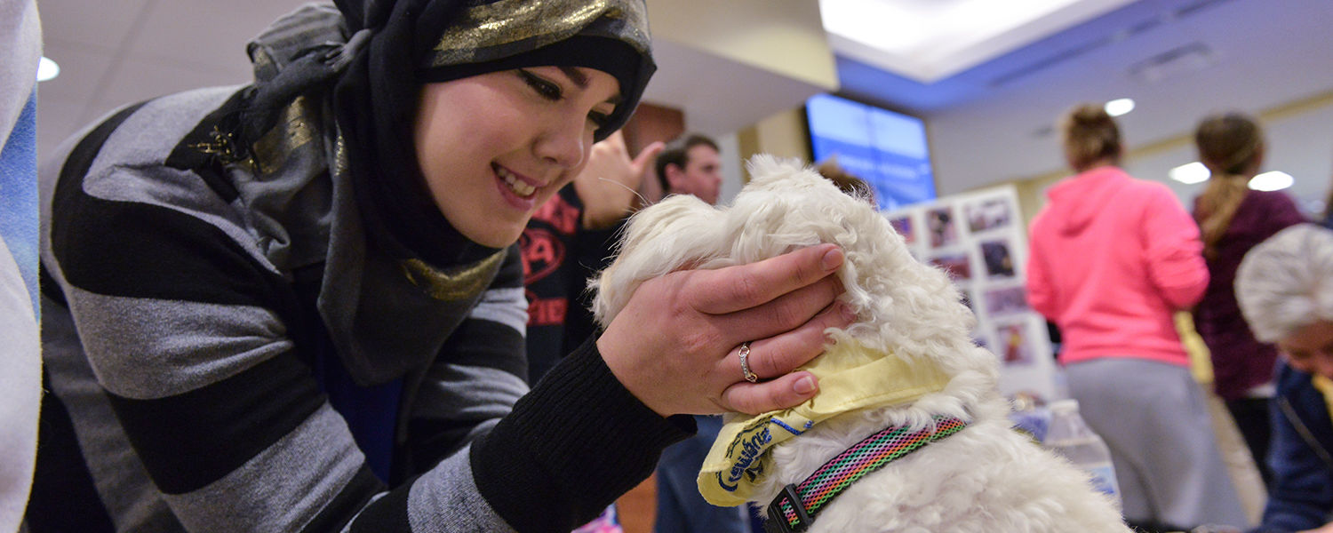 A Kent State student gets up close with one of the therapy dogs during the Stress-Free Zone event in the library.