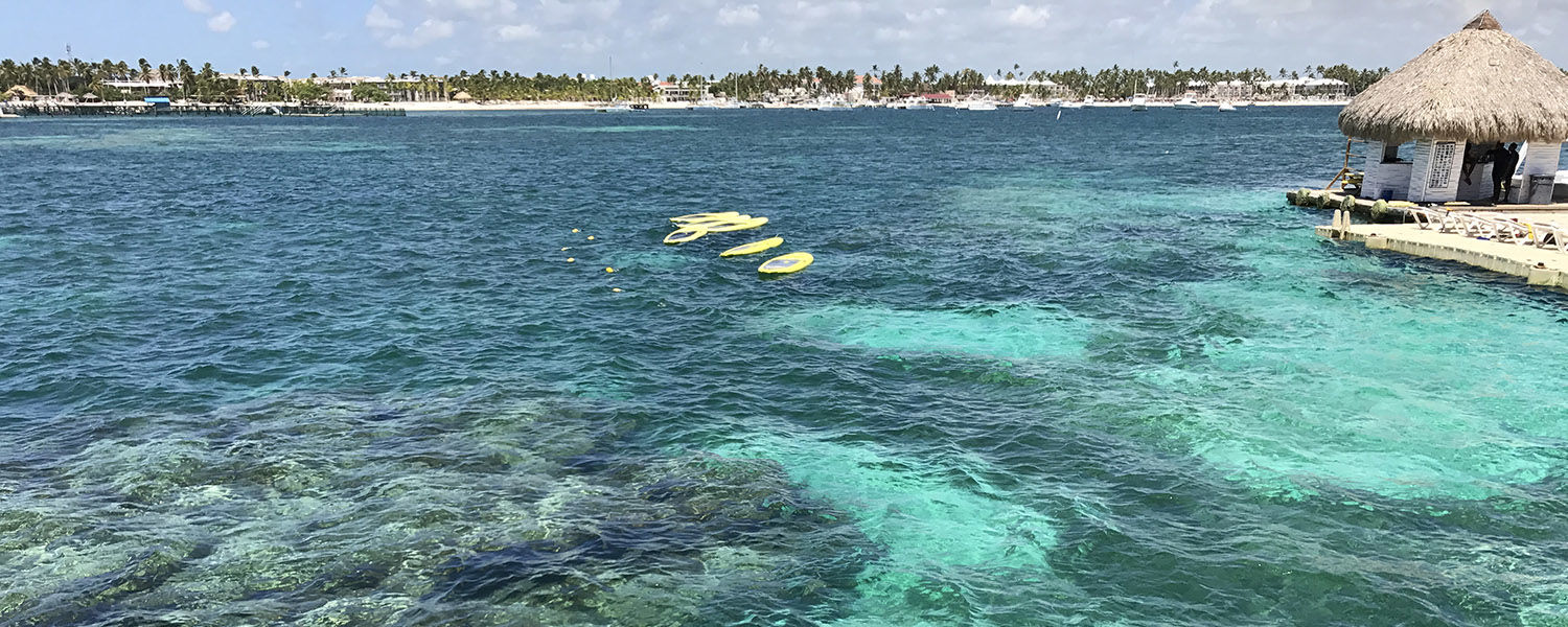 """Cassie Gallagher, giving specialist for Kent State University Foundation, traveled to Punta Cana for her honeymoon. This picture was taken when they went snorkeling. They swam with sting rays and nurse sharks. """"The water was beautiful!"""" she says."""