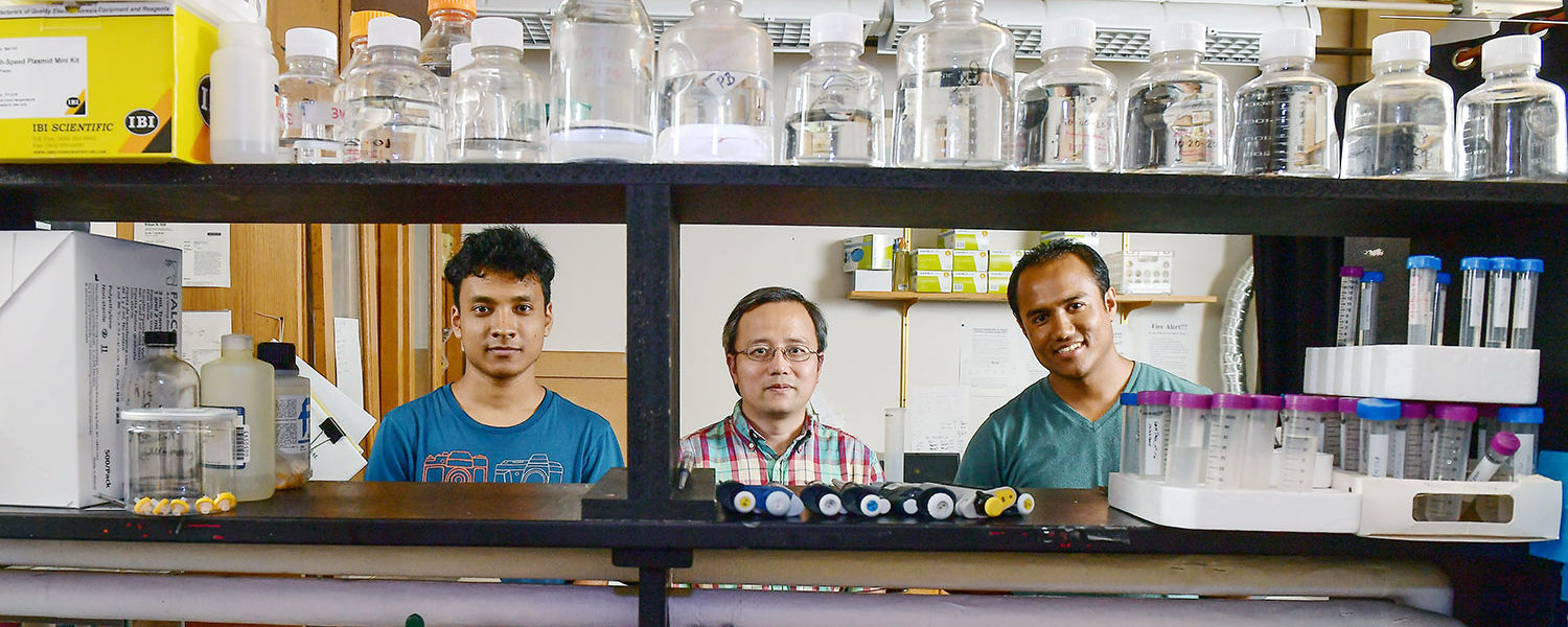 Kent State Professor Hanbin Mao (middle) co-authored a paper with graduate students Sagun Jonchhe (left) and Prakash Shrestha (right) on the genetic factors influencing the formation of cancer cells.