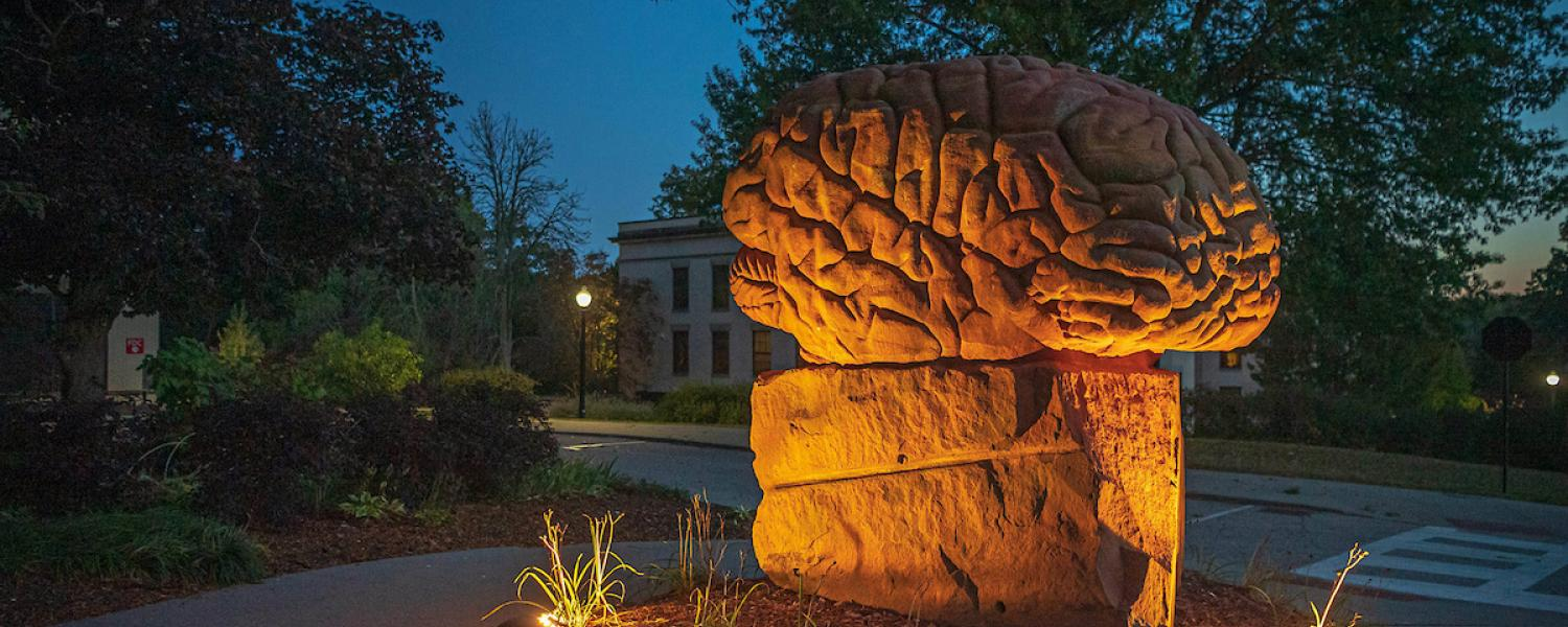 Photo of the Brain statue lit up at dusk on Kent Campus.