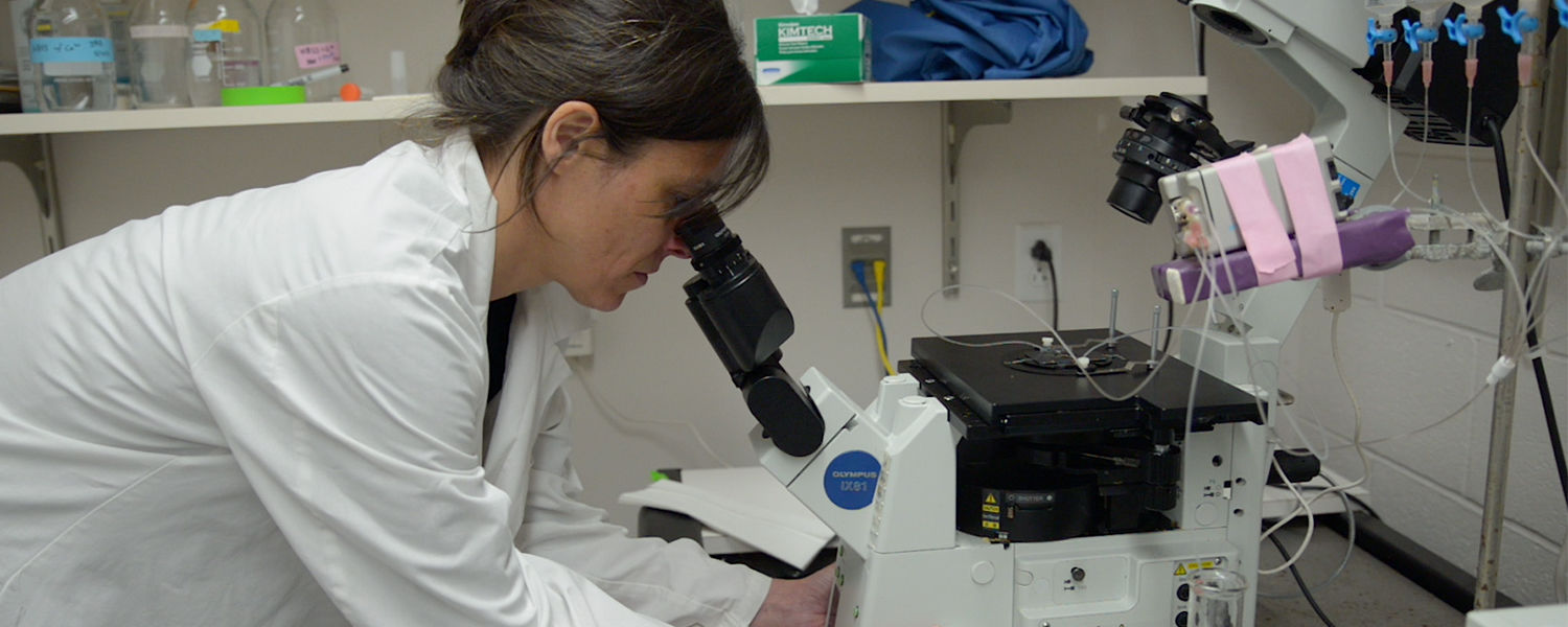 Gemma Casadesus Smith, an associate professor of biological sciences at Kent State University, works in the lab on the Kent Campus.