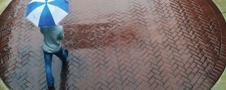 Esplanade Umbrella