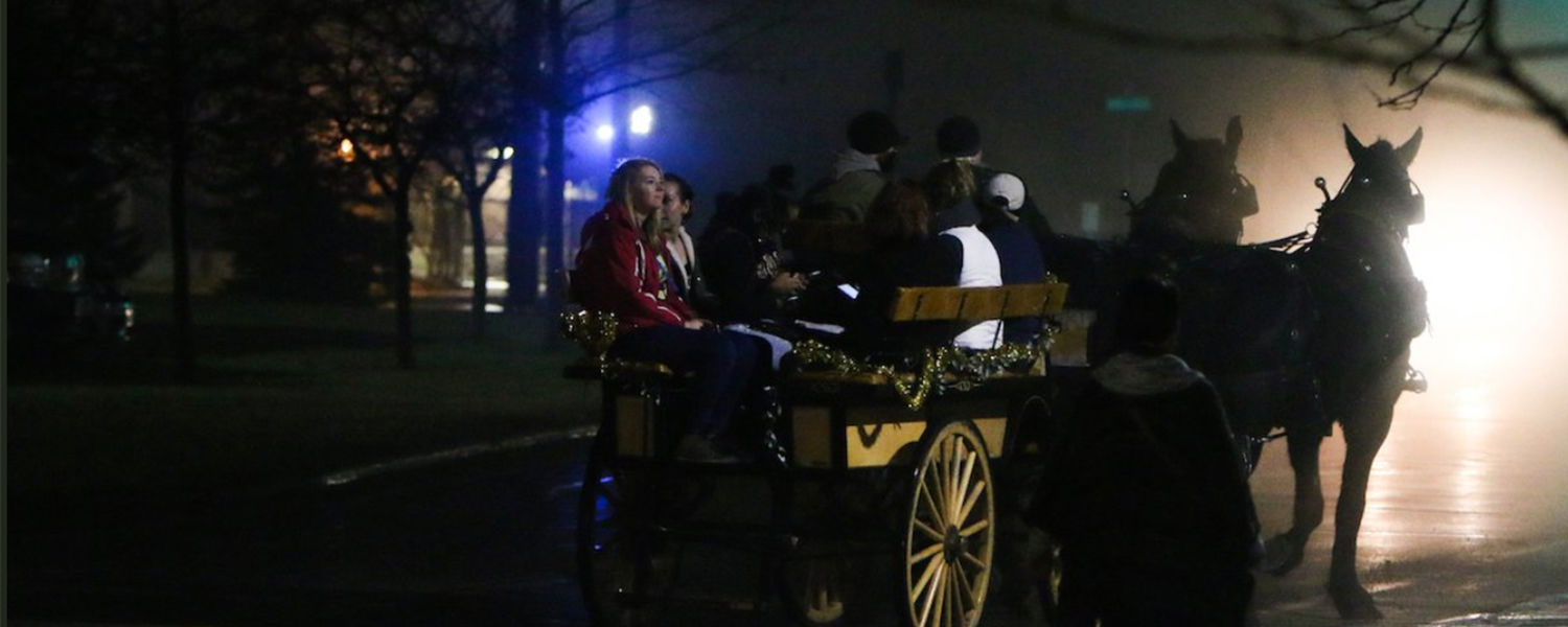 Horse and carriage ride at Winterblast