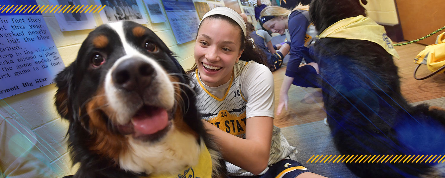 Students enjoying the therapy dogs on campus.