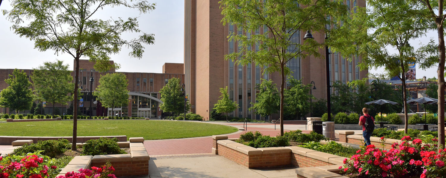 The library side of Risman Plaza