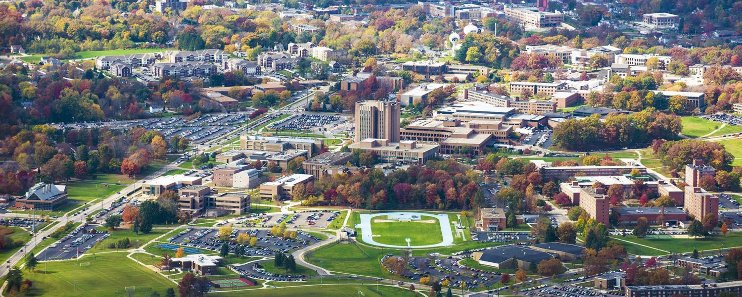 Enjoy this view of the Tree Campus.