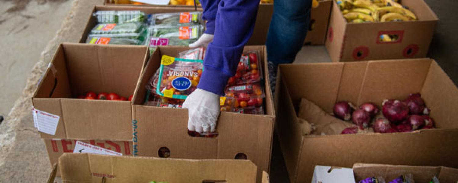 image of a volunteer organizing donated food
