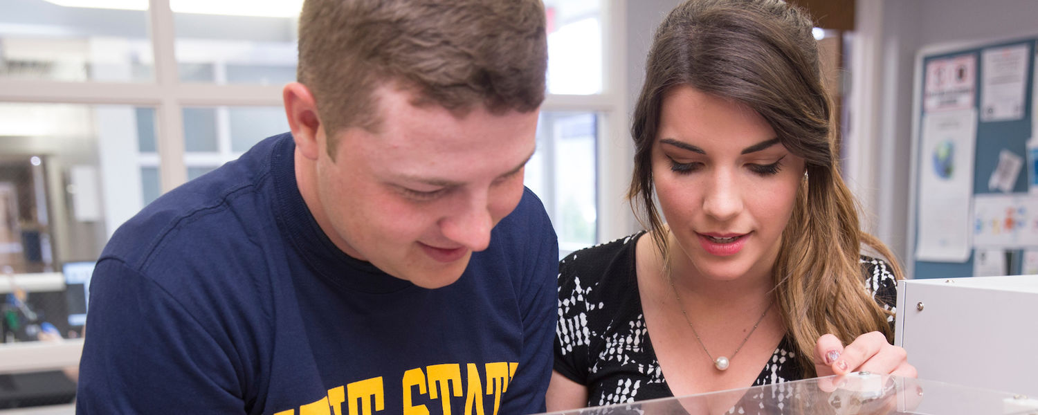 Students observe the research process in a Kent State lab