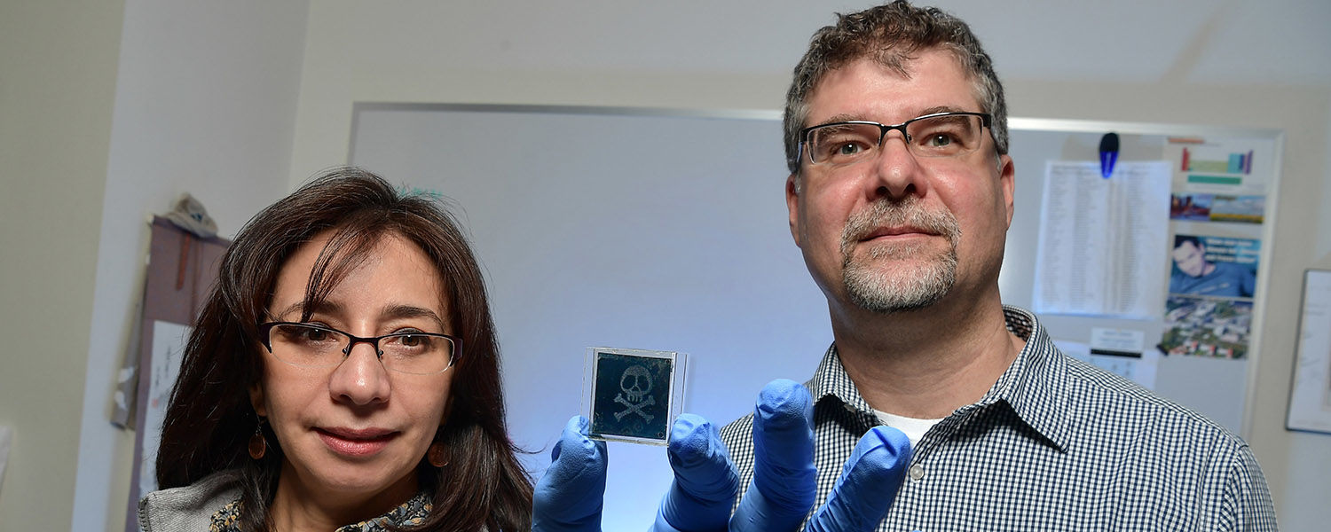Drs. Elda (left) and Torsten (right) Hegmann show off a liquid crystal nanoparticle sensor they're designing with Merck Materials, one of three KSU projects supported by the TeCK Fund