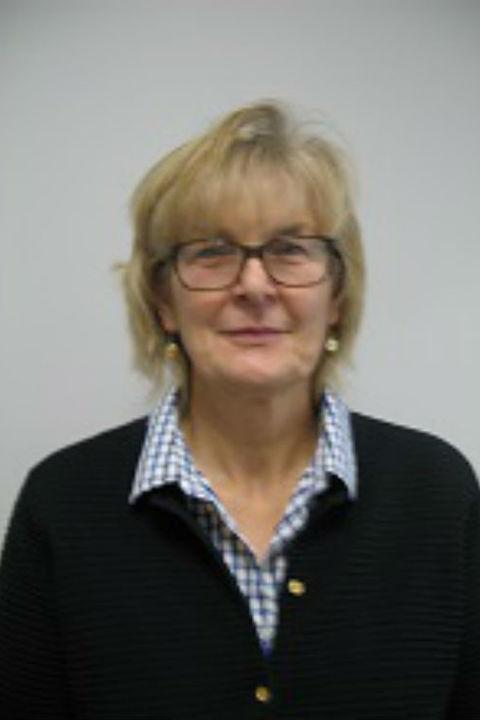Ellen Mulqueeny