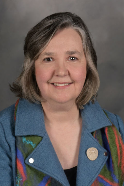 Kent State Selects Alison Smith as the New Dean of the Honors College