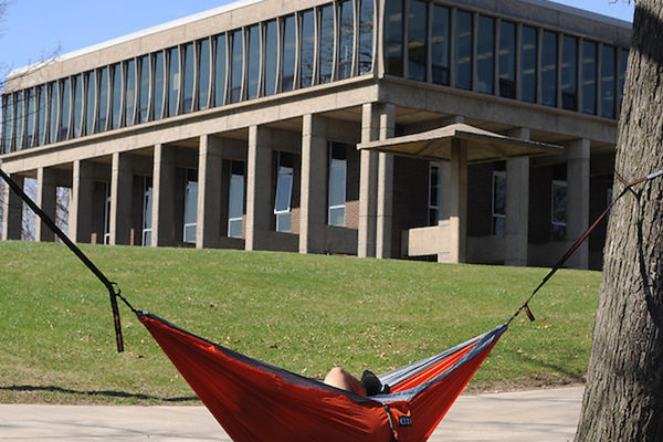 Hammock hanging in between trees with Taylor hall in the background