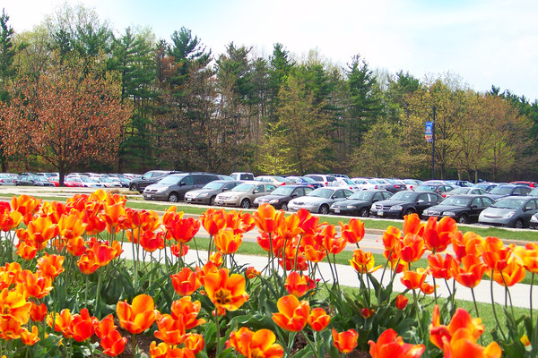 Overlooking C Campus Center Lot.  The lot is filled with cars.