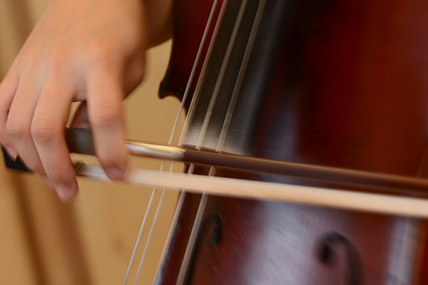 Orchestral instrument