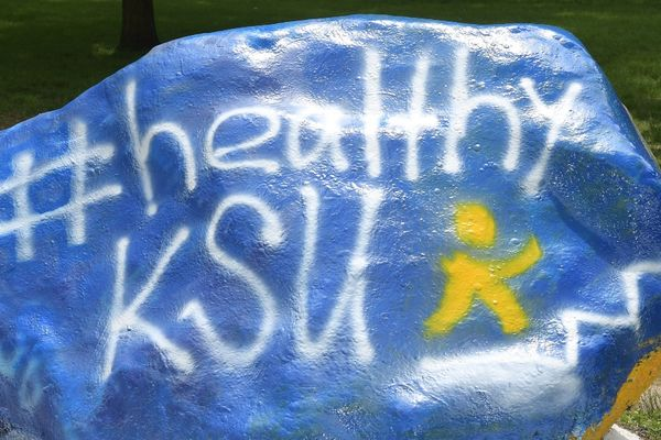 the rock painted with #healthyksu