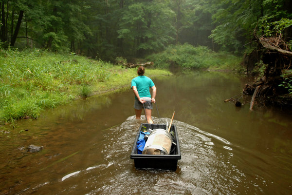 Jennifer Clark, a PhD. student in the Biology Department, makes her way up a creek in the Jennings Woods area of Ravenna, Ohio. Clark is studying crayfish in the creek.
