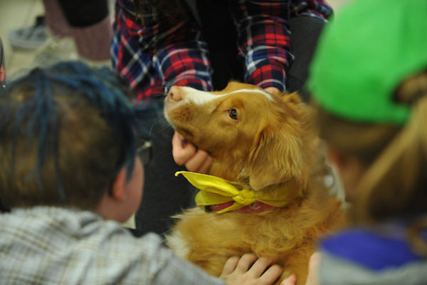 Students petting a dog.