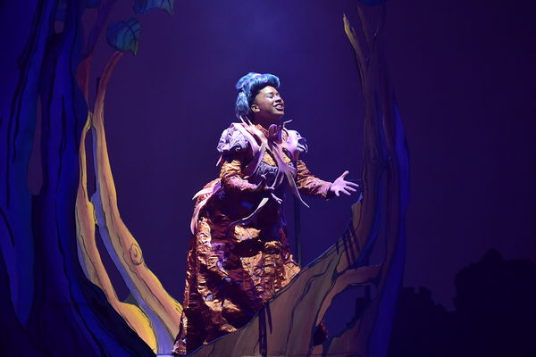 "A student performs in ""Into the Woods"""