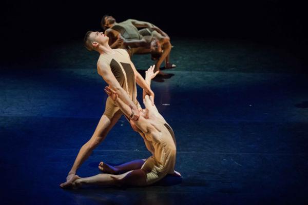 Verlezza, Sabatino A. in Rioult Dance NY photo by Sofia Negron 2013