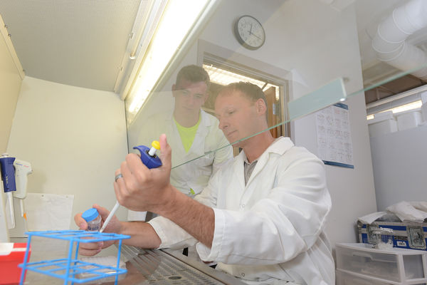 Research at Kent State's biomedical program