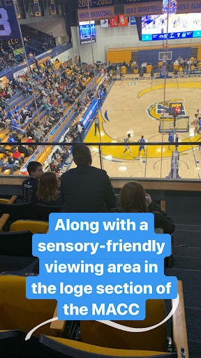 Sensory-friendly viewing area