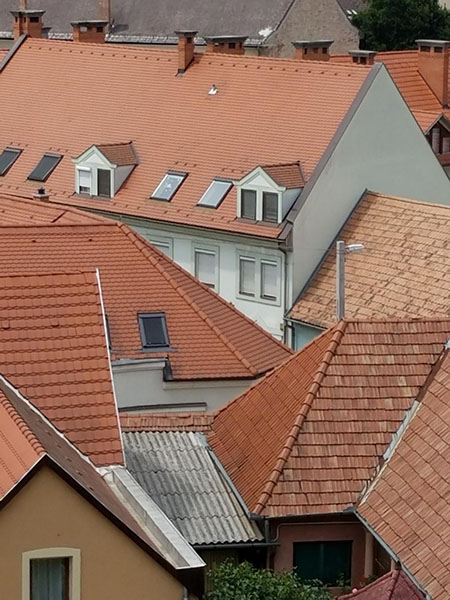 Wendy Gold, organizational development coach, Division of Human Resources, spent a week in Hungary visiting the family of her fiancée, who she says were also great tour guides. She shared this photo of the rooftops taken from the castle/fortress of Eger.