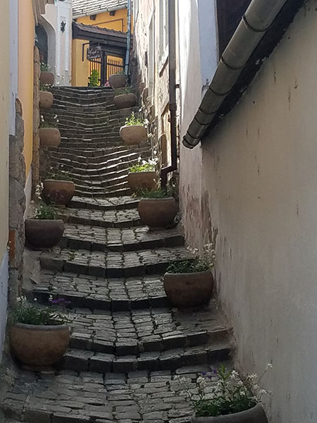 Wendy Gold shared this photo of an alleyway in Zsentendre, an artist community outside Budapest.