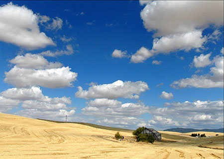 The Palouse shot, submitted by Pratim Datta, was taken in the high desert of Washington State.